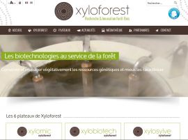 Xyloforest (INRA)